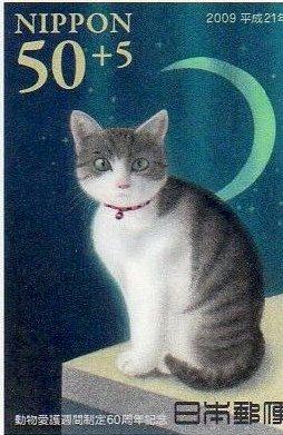 動物愛護週間制定60周年祈念(猫)その5.jpg