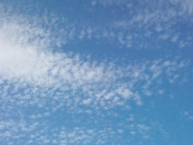 20100903-F1010420.jpg